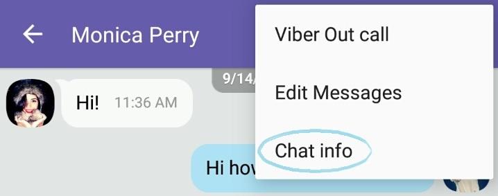 viber-chat-info4