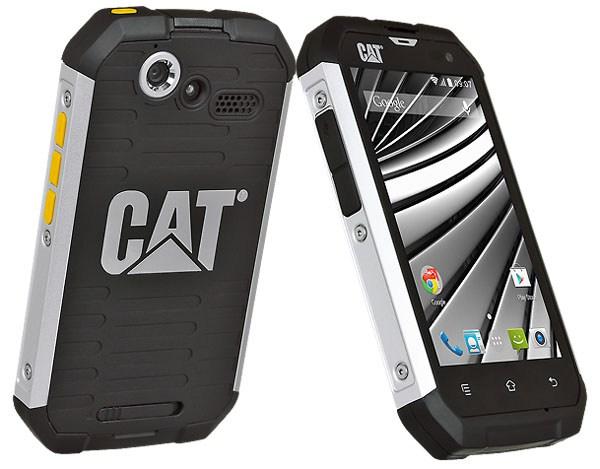 Cat-B15q.jpg